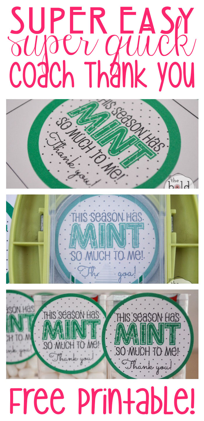 photograph regarding Thank You for Your Commit Mint Printable named Mint Consequently Substantially Educate Thank Oneself Snacks and totally free printable!