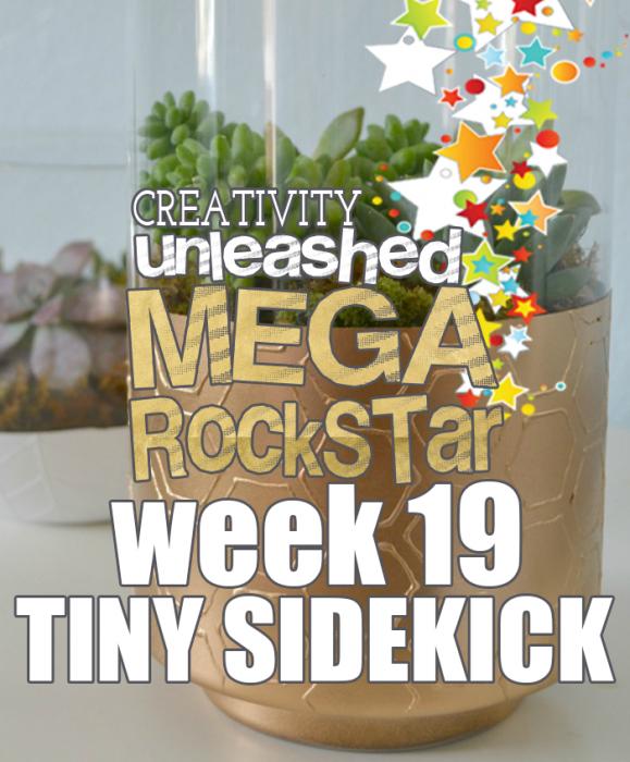 Mega-rockstar-of-the-week-19