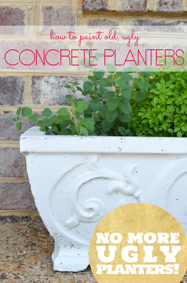 How to Paint Concrete Planters... it's such a quick and easy way to update those old, ugly planters!