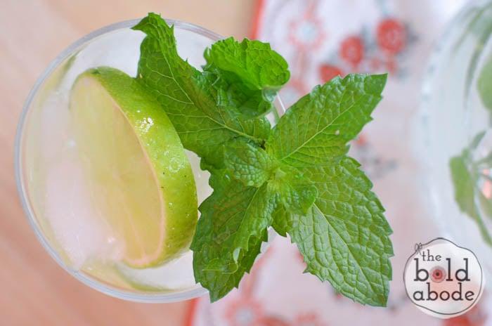 sparkling mojito water-11