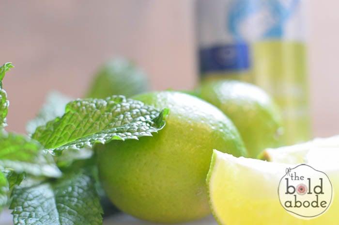 sparkling mojito water-2
