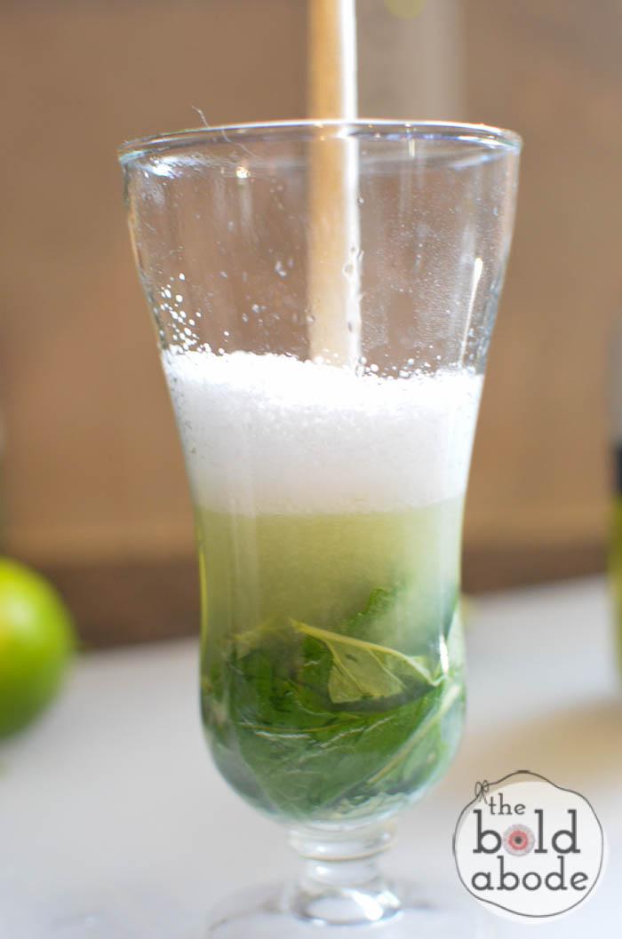 sparkling mojito water-5