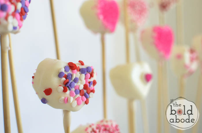 chocolate covered marshmallow heart garden-11