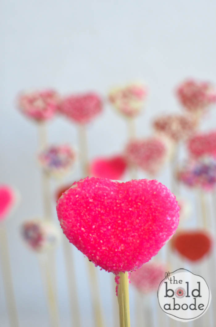 chocolate covered marshmallow heart garden-18