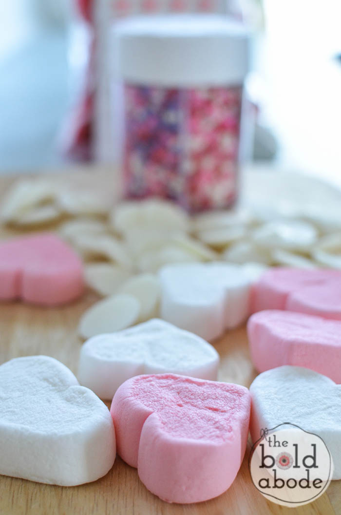 chocolate covered marshmallow heart garden-27