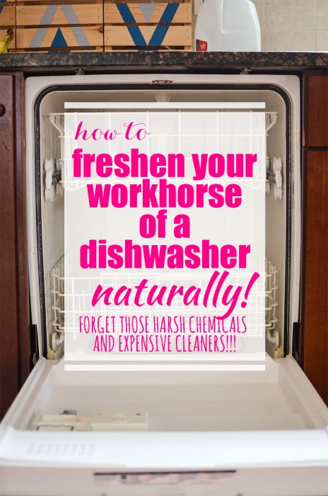 freshen-your-workhorse-of-a-dishwasher