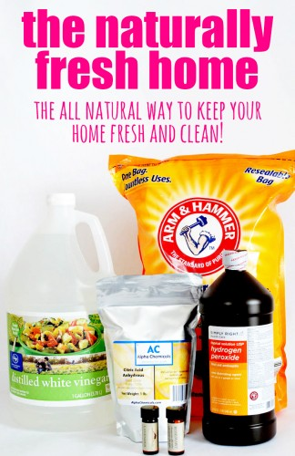 The Naturally Fresh Home: The All-Natural way to keep your home fresh and clean!