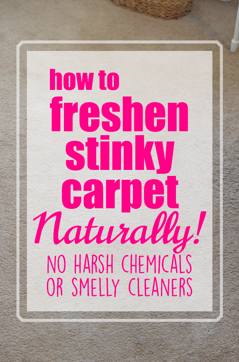 freshen-stinky-carpet-naturally
