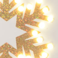 Bright Light Snowflake Canvas