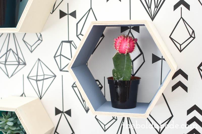 color pop hexagon shelves-11