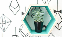 hexagon shelf with succulent