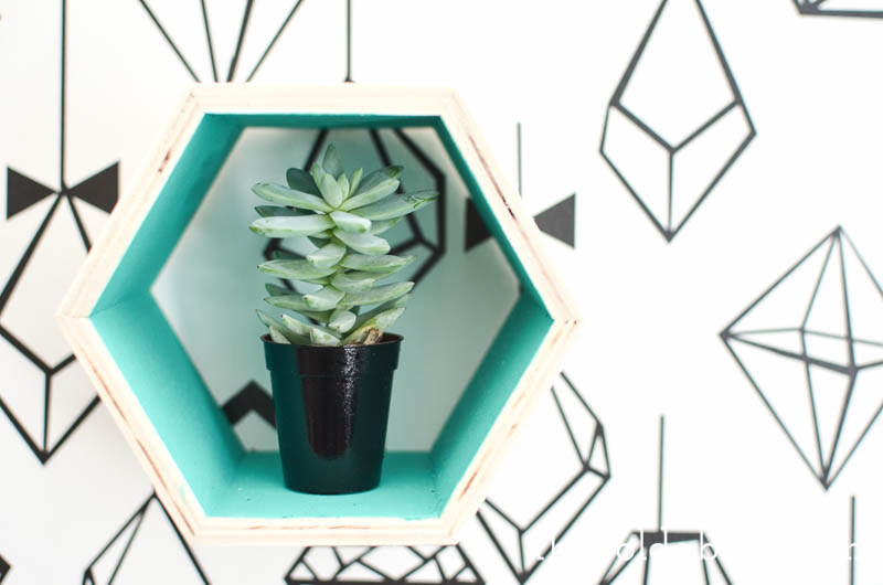 color pop hexagon shelves-16