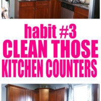The Self-Cleaning Home Part 3: Clean Kitchen Counters!