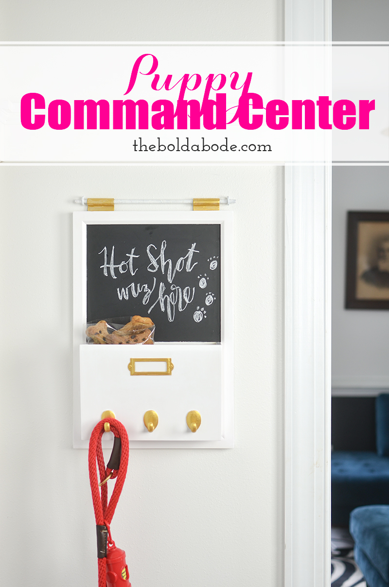Make your own Puppy Command Center and get all things puppy organized! Have all your treats, leashes and poop bags right at your fingertips!